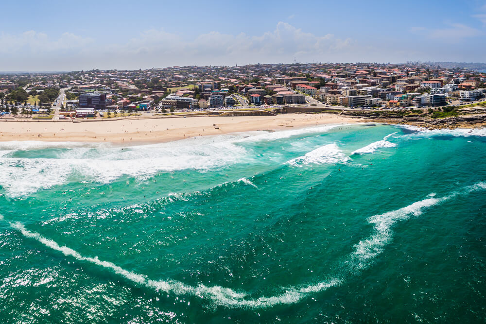 Spotlight on Maroubra
